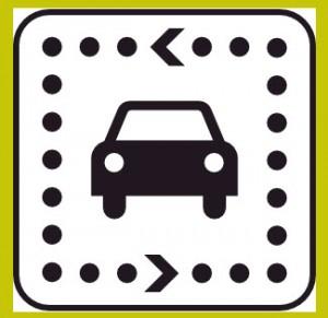 TVDL Driver License