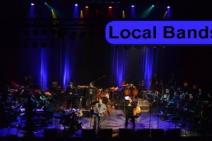 live bands, local bands, chicago, concerts, live music