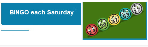 Bingo Saturdays, Saturday Bingo, Chicago, Jefferson Park bingo, copernicus Center, ICE bingo, fundraiser
