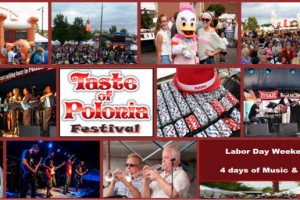 Taste of Polonia, Festival, Chicago, August festivals, September festivals, music festival, live bands, Polish food, Polish beer