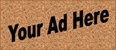 Advertise on website, Copernicus Center, website advertising