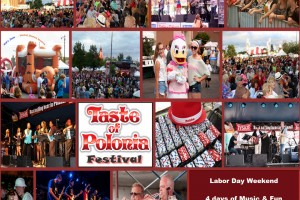 Taste of Polonia Festival - Chicago - August
